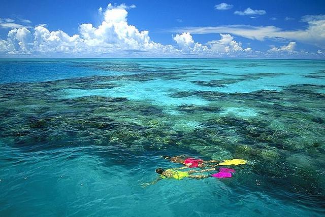 Las Bermudas: paraíso del Snorkel y del submarinismo
